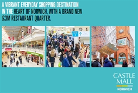2,012 SF Shopping Centre Unit for Rent  |  Unit 38 Castle Mall Shopping Centre, Norwich, NR1 3JQ